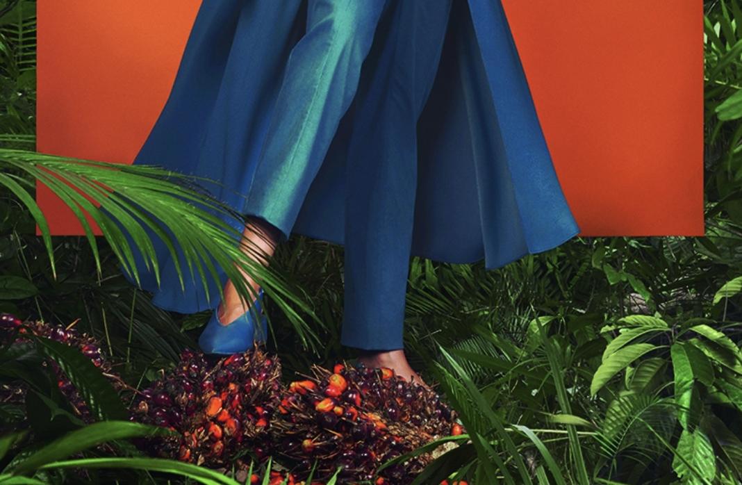 pies de mujer pisando arbol de aceite de palma