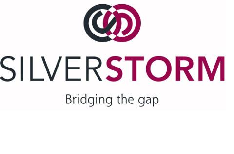 SilverStorm-diseñador-gráfico-valladolid