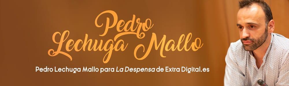 Pedro Lechuga Mallo