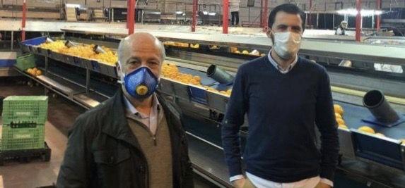 Efyasa) e Iberhanse, empresas sevillanas productoras de fruta, han donado al Banco de Alimentos de Sevilla 10.000 kilos de naranjas