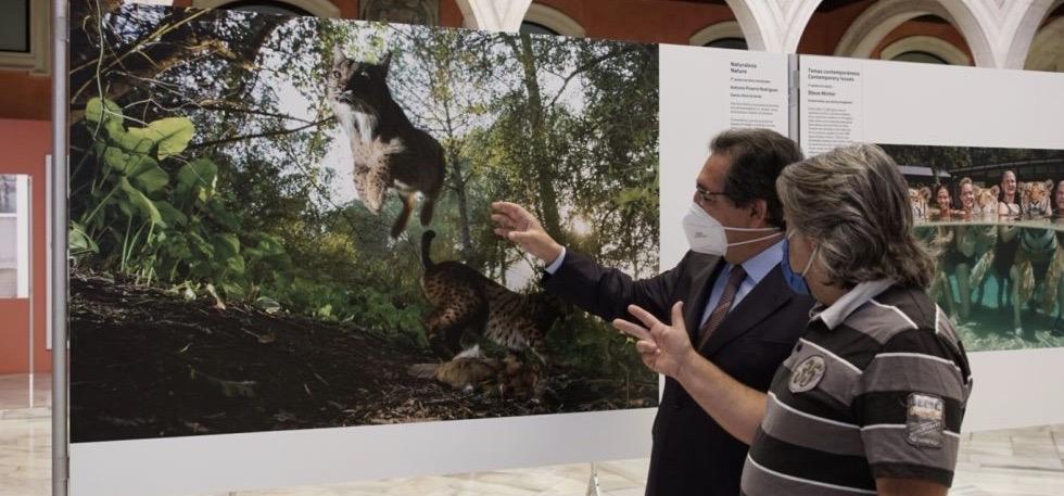 La Fundación Cajasol vuelve a ser la primera ciudad española que acogerá la exposición de las fotografías galardonadas con el World Press Photo 2020.