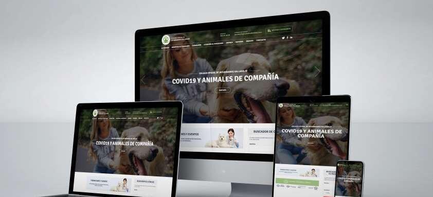 nueva-web-colegio-veterinarios-valladolid