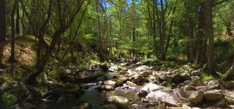 Parques Naturales cyltv