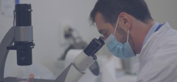 Investigacion medica