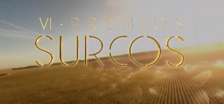VI Premios Surcos
