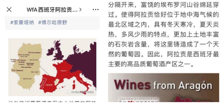 vinos-aragoneses-red-social-china
