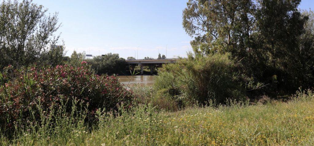 'Cuidemos el Guadalquivir', pretende recuperar el entorno del río Guadalquivir a su paso por las provincias de Jaén, Córdoba, Sevilla y Cádiz.