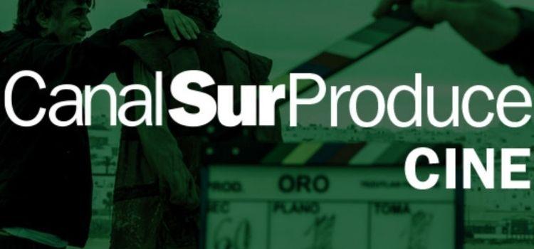Canal Sur va a coproducir 27 largos, 16 de ellos de ficción y 11 documentales, cinco documentales de televisión, y cuatro series.