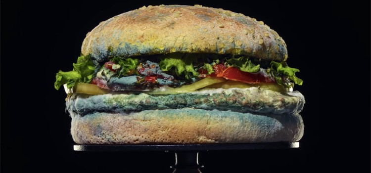 campanas-el-sol-moldy-whopper-burger-king
