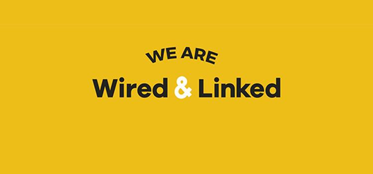 oferta-wired-&-Linked